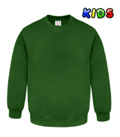 Kids Sweatshirts green