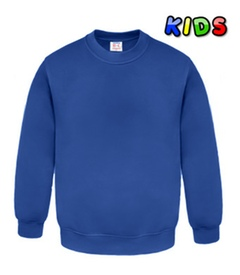 Kids Sweatshirts royal